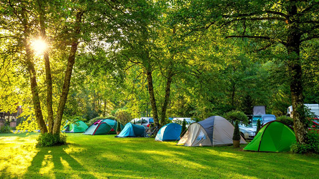Best Summer Camping Sites for Camping in Dharamshala